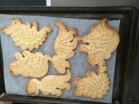 Skeleton dinosaurs