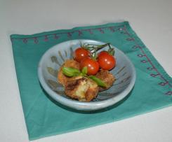ThermoMonts Zucchini Croquettes