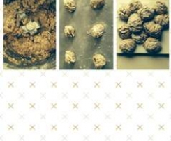 Almond and Chia biscuits