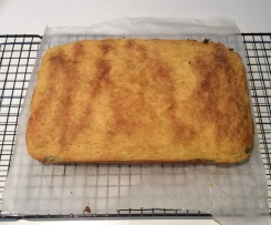 Apple and Apricot Slice