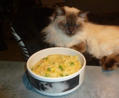 Thermo-cat Jemima - Kid Friendly Risotto