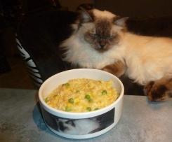 Thermo-cat Jemima - Kid Friendly Risotto