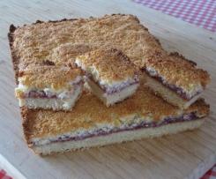 Raspberry Jam Coconut Slice
