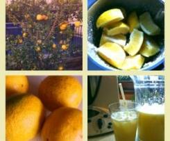 Ginger and Lemonade