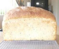 Megan's Wonder Bread