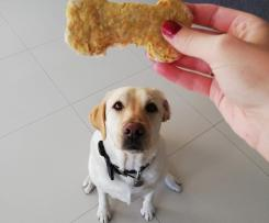 Georgie's Treatos ( dog treats)