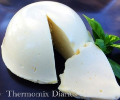 Thermomix Mozzarella and Bocconcini