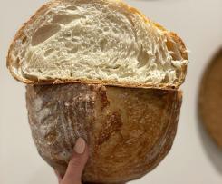 5 hours Dutch oven Bread