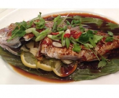 Varoma Snapper with Asian flavoured sauce