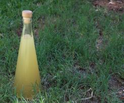 Ginger & Lime Cordial