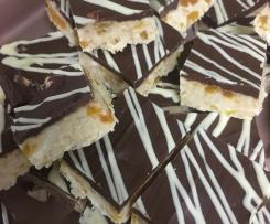 Chocolate Apricot Slice