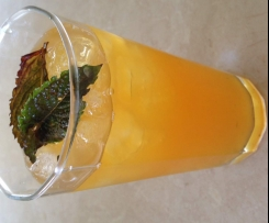 Refreshing South African Rooibos, Mint & Citrus Tea