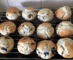 Blueberry choc-chip muffins