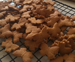 Ginger & vanilla snack biscuits