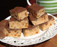 Shelley's Apricot and Chocolate Slice