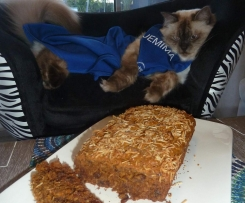 Thermo-Cat Jemima's Healthy Carrot Cake