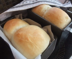 Quick & Easy Bread Dough for Buns/Loaves