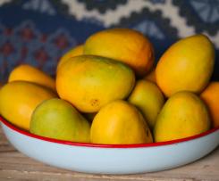 Dans super easy frozen mango bars