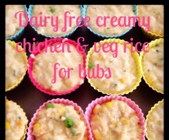 Dairy Free Creamy Chicken and Veg Rice For Bubs