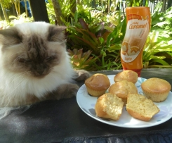 Thermo-cat Jemima's Caramel Muffins