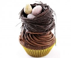 Chocolate Cupcakes decorated with a chocolate nest and Easter eggs