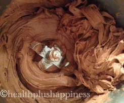 2 ingredient Chocolate Gelato