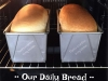 Our Daily Bread TM6 TM5 & TM31 White Bread  Loaf