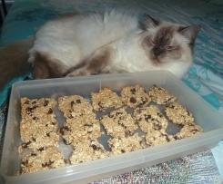Thermo-cat Jemima's Healthy Treat